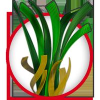 erba-sintetica-FINE