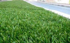 erba sintetica per giardini e campi